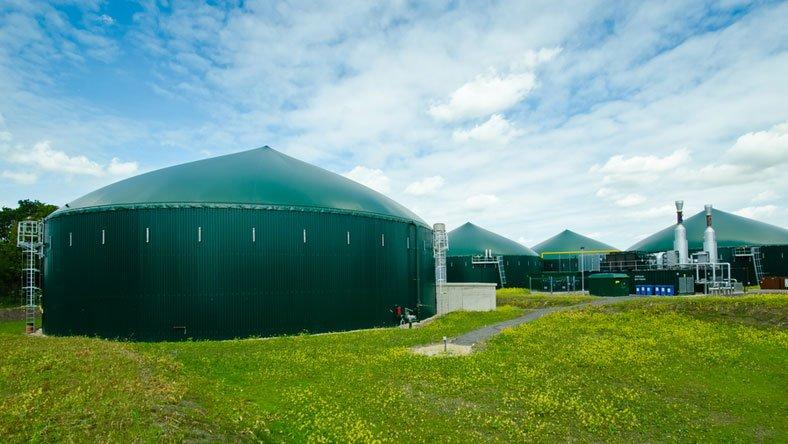 Biogasanlage und Pferdemist mit Stroh
