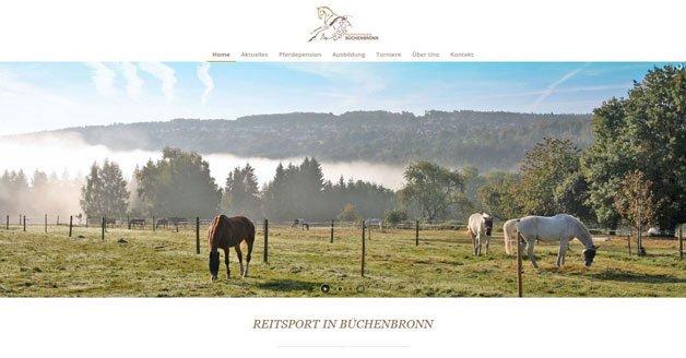 Homepages für Pferdebetriebe optimieren