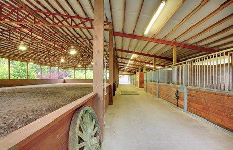 Förderung für Existenzgründer mit Pferden