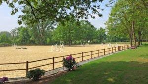 Privilegiertes-Bauen-Pferdebetriebe